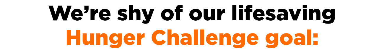 We're shy of our lifesaving Hunger Challenge goal.